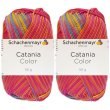 2x50 Gramm Schachenmayr Catania Color 205 Esprit Color